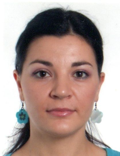 Ana Mitioglu, Organisation